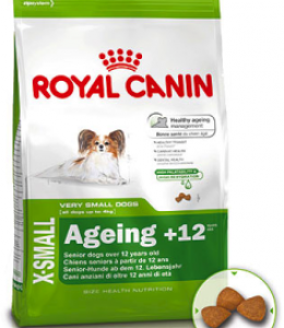 X-Small Adult Ageing 12 +