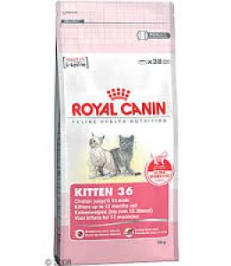 Kitten Royal Canin