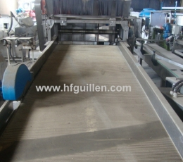 CUTTING MACHINE FOR ESPECIALLY LONG VEGETABLES