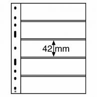 Hoja multicolec de 5 bandas transparente