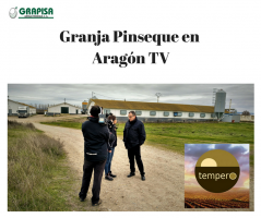 Grapisa en Tempero de Aragón TV