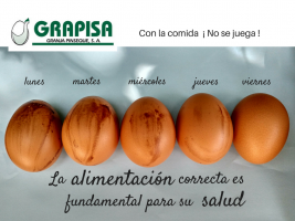 Huevos manchados de sangre. Influencia de la alimentación.