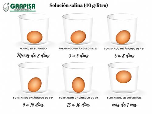 ¿Qué edad tienen tus huevos?