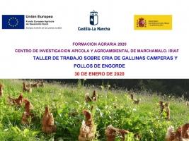 TALLER SOBRE CRÍA DE GALLINAS CAMPERAS Y POLLOS DE ENGORDE