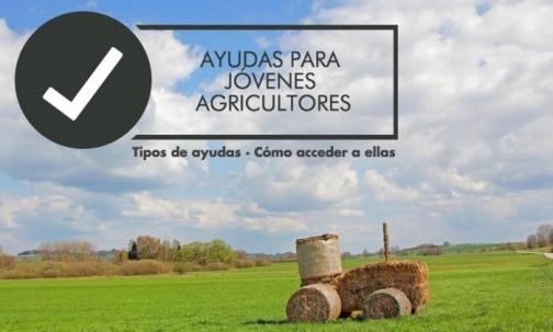 AYUDAS A JOVENES AGRICULTORES PARA LA PRIMERA INSTALACION