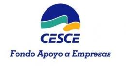 FONDO DE APOYO A EMPRESAS