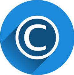 Los derechos de Propiedad Intelectual