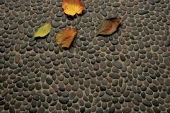 Tapa de piedras