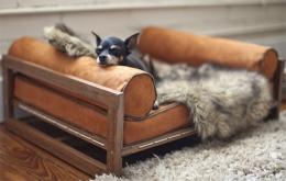 Cama de forja para mascotas