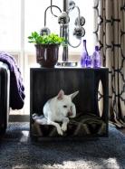 Cajón de madera para mascotas