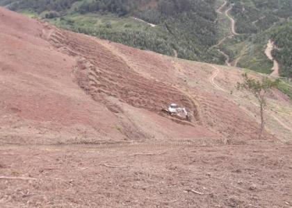Adquisición de terenos forestales