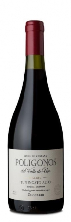 Botella 750 ml Poligonos Alto Tupumgato Malbec