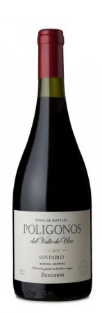 Botella 750 ml Poligonos San Pablo Malbec
