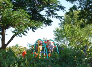 ¡ Disfruta del IV Día del Camping este sábado !