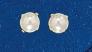 Dormilon perla 05