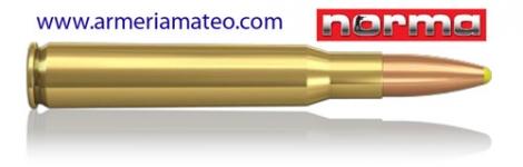 MUNICION NORMA PLASTIC POINT PPDC