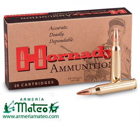 MUNICIÓN HORNADY CUSTON SP 9.3X62 286 GR