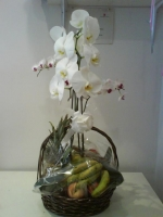 EXCLUSIVE BASKET OF ORCHIDS AND FRUIT