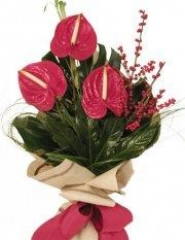 ANTHURIUMS EXOTIC BOUQUET