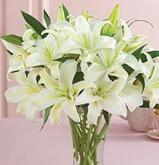 WHIITE LILIES
