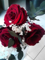3 RED PRESERVED ROSES