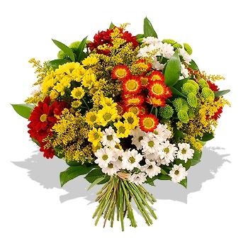 Enviar flores Madrid