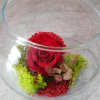 PRESERVED ROSE IN A GLASS BALL