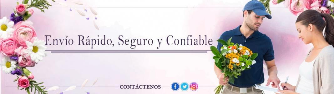 ENVIO URGENTE MADRID CENTRO INTERIOR M-30 ANTES DE 2 HORAS