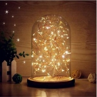 GLASS DOME WITH LED LIGHT