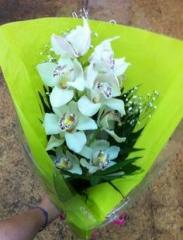 SINGL FLOWER OF ORCHID IN VASE