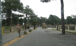 Pinar Jardín Párraces II
