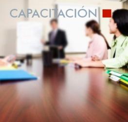 Capacitacion Profesional - Resolución Provisional de Aptos 2012