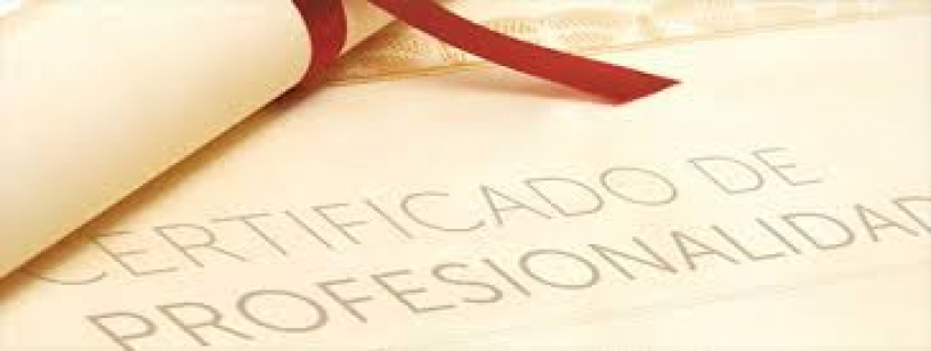 Certificado de Profesionalidad a través de las competencias claves
