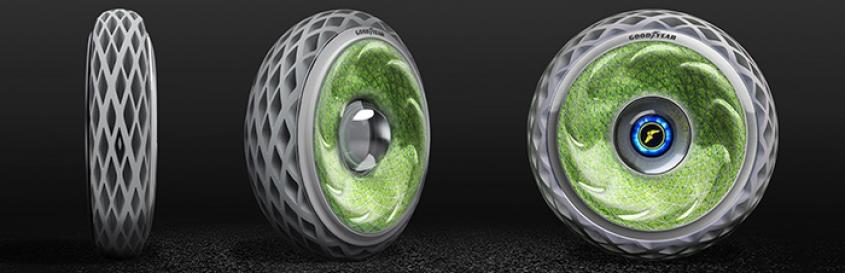 Neumáticos con musgo, absorben Co2 y liberan Oxígeno