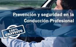 PREVENCIÓN Y SEGURIDAD EN LA CONDUCCIÓN PROFESIONAL