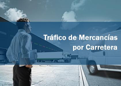 TRÁFICO DE MERCANCÍAS POR CARRETERA