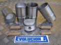 PISTON KIT OF 76mm DIAMETER WITH CYLINDER LINER