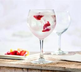 Copas Especiales - Gin Tonic