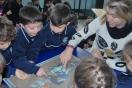 Actividades interactivas de los alumnos de 3 años y 1ºEP empleando la mesa digital