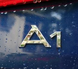 A1/S1