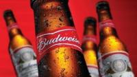 AB-InBev quiere resucitar Budweiser