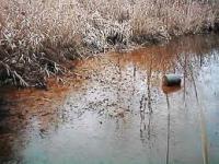 Utilizan PET contra contaminación de agua con arsénico