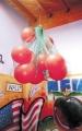 red portabalones balones gigantes, red balones gigantes