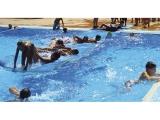 tapiz continuo piscina, tapiz flotacion continuo, alfombra magica