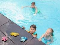 animales acuaticos, animalitos piscina, animales buceo