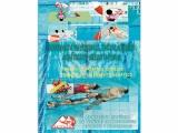 libro socorrismo, libro socorrista en piscinas