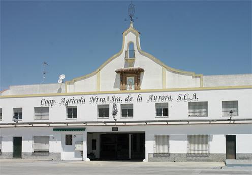 5 motivos para comprar el vino en Bodegas La Aurora