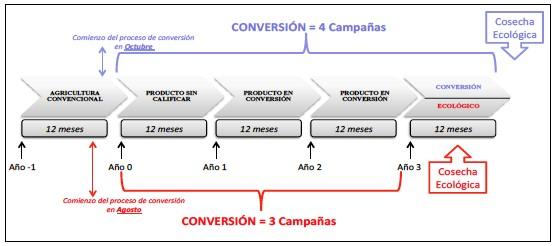 esquema periodo conversion viñedo agricultura ecologica
