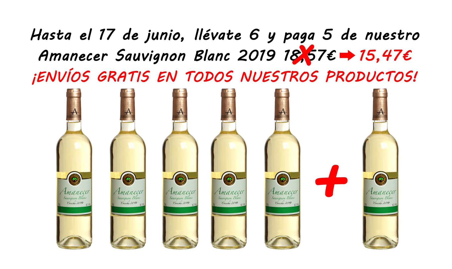 Blanco Joven Sauvignon Blanc 2019 6 x 5