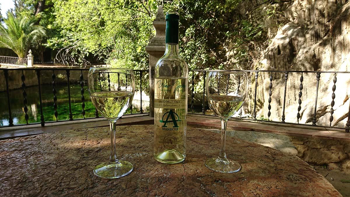 Con A de Alegría, presentamos nuestro nuevo Sauvignon Blanc 5